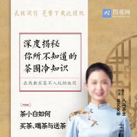 茶艺公开课直播手机海报免费下载psd源文件